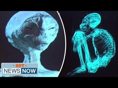 nazca aliens breakthrough: dna test proves'extraterrestrial mummies' real beings