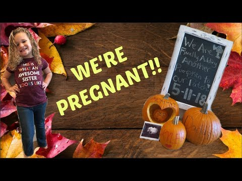 WE'RE PREGNANT! PREGNANCY REVEAL! 9.26.17 ❤️