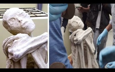 Researchers Find A Mysterious Three-Fingered 'Alien Mummy' In Peru