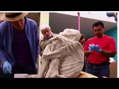 Mummified 'Non Human' Corpse Found Near Mysterious Nazca Carvings