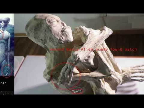 Nazca Alien Mummies Match To 1992 Eiger EBE And Dead Alien In Russia