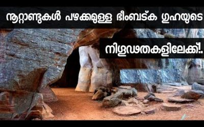 Bhimbetka Bhopal : Rock Shelters & Cave Paintings | Malayalam | A heritage of great civilization
